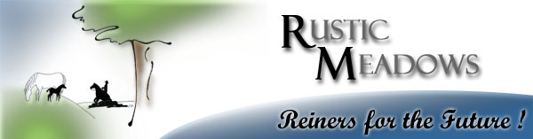 Rustic Meadows  -  Breeding for Athletic Ability, Trainability & Longevity...Reiners for the Future. Click here to enter our site >>